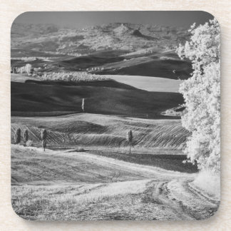 Black & White view of winding road Drink Coasters