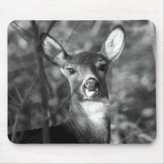 Black & White White-Tailed Deer Mousepad