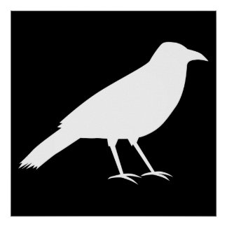 Black with a White Crow Posters