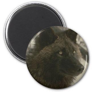 Black Wolf 6 Cm Round Magnet