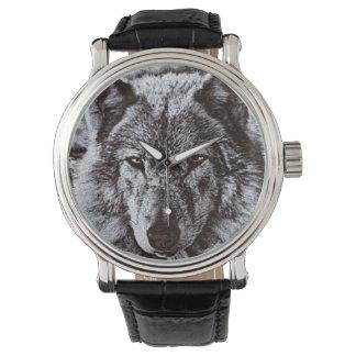Black Wolf Face Wildlife Watch