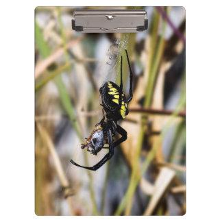 Black & Yellow Argiope Garden Spider Clipboard