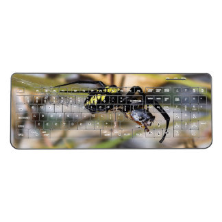 Black & Yellow Argiope Garden Spider Keyboard