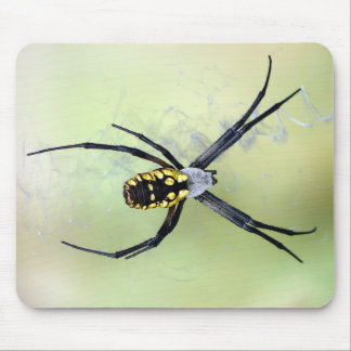 Black & Yellow Argiope Garden Spider Mousepad