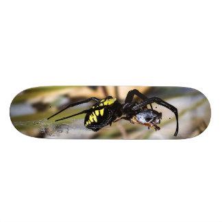 Black & Yellow Argiope Garden Spider Skate Board