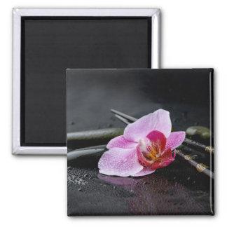 Black zen orchid magnet