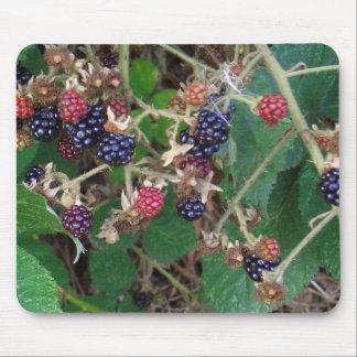 Blackberries Blackberry Mousepad