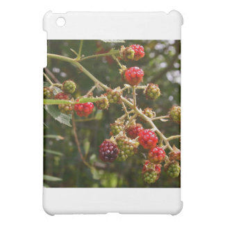 Blackberries iPad Mini Cases