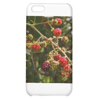 Blackberries Case For iPhone 5C