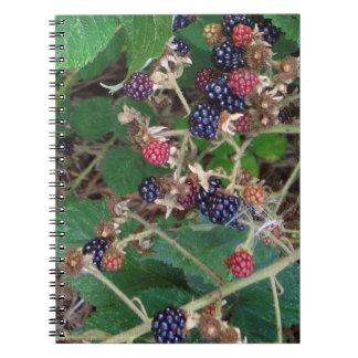Blackberries spiral photo note book