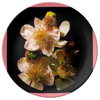 Blackberry Blossoms Plate