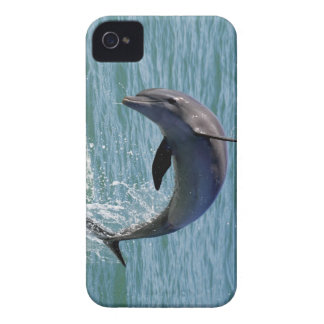 Blackberry Bold-Barely There Case Mate Case-Mate iPhone 4 Case