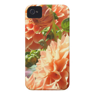 Blackberry Bold cases Dahlia Flowers phone covers