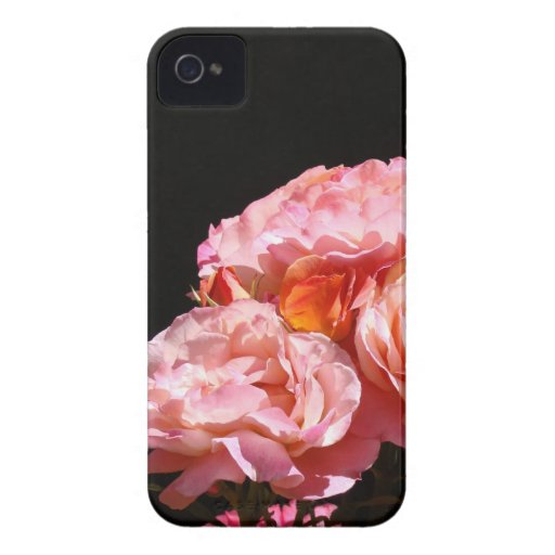 Blackberry Bold cases Pink Rose Flowers Roses