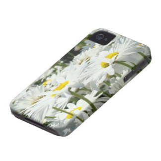 Blackberry Bold cell phone cases custom Daisies iPhone 4 Case-Mate Case