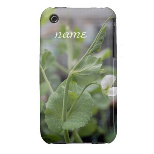 Blackberry Case  Pea Vine 1