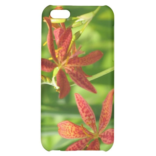 Blackberry Lilies. iPhone 5C Cover