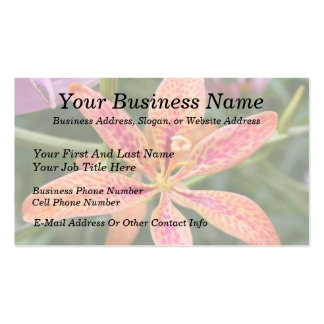 Blackberry Lily Business Card Templates