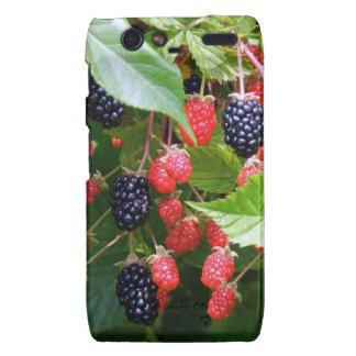 Blackberry Patch Droid RAZR Cover
