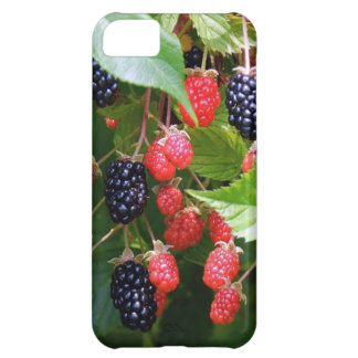 Blackberry Patch iPhone 5C Covers
