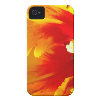 Blackberry phone cases Red Yellow Tulip Flowers Case-Mate iPhone 4 Case