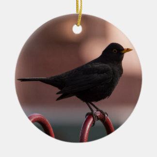 Blackbird Ceramic Ornament