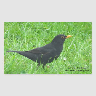 Blackbird image for Rectangle Stickers, Glossy Rectangular Sticker