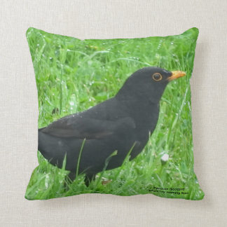 Blackbird image for Throw Cushion