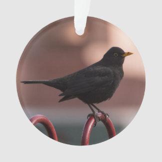 Blackbird Ornament