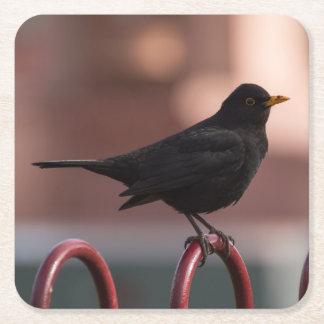 Blackbird Square Paper Coaster