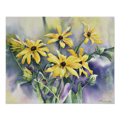 Blackeyed Susan Watercolor Painting Posters