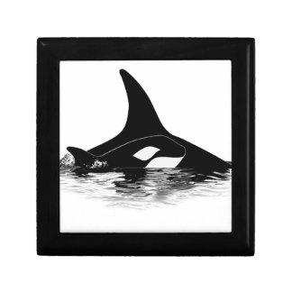 Blackfish Jnr Gift Box