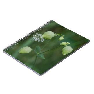 Bladder Campion Pretty White Wildflower Notebook