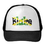 Blake Jamaican Flag