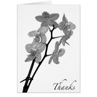 Blank Black and White Orchid Thank You Card