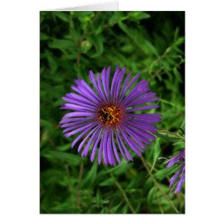 Blank-Blue Flower Card