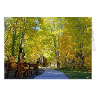 Blank Card, Aspen Trees, Autumn Card