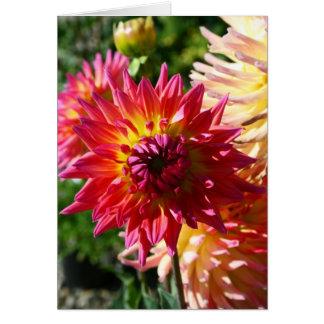 Blank Card, Dahlia Flower Card