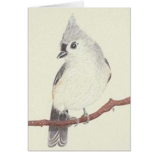 Blank card - Tufted Titmouse
