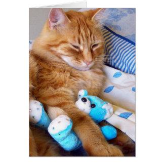 Blank Cat Cards