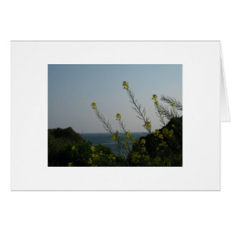 Blank-Flower Sea View Note Card