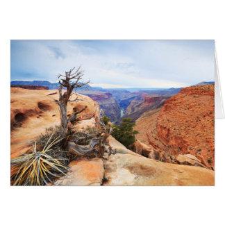 Blank Grand Canyon Card