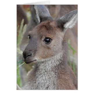 Blank Greeting Card - Kangaroo Joey