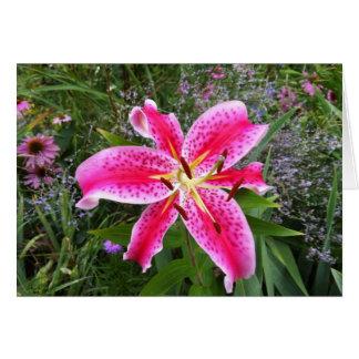 Blank Greeting Card - Stargazer Lily