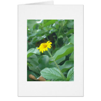 Blank greeting card with yellow flower