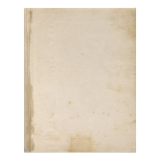 Blank Grungy Antique Stained Paper