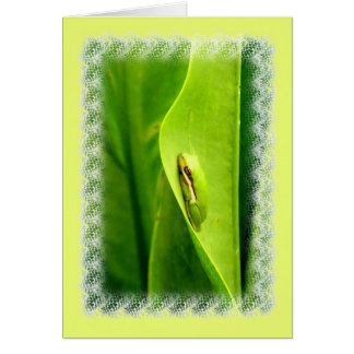 Blank Note Card, Green Tree Frog Card