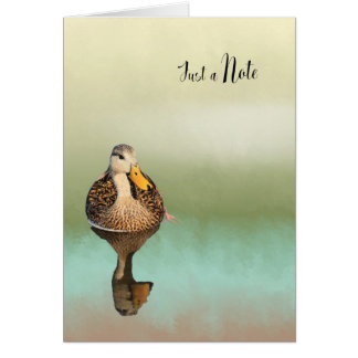 Blank Note Card with Mottled Duck