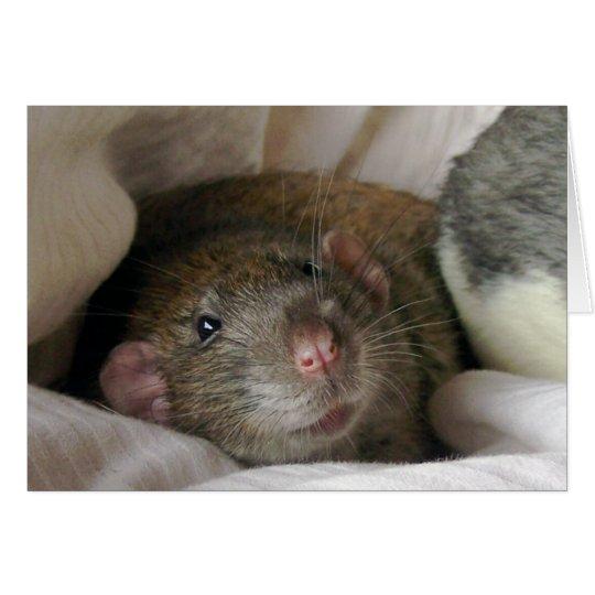 Blank Rat Card