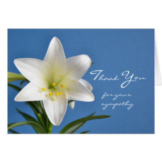 Blank Sympathy Thank You Note Card, Easter Lily Card